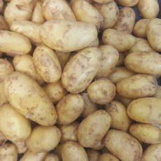 Bio Újkrumpli sárga - 790 Ft/kg